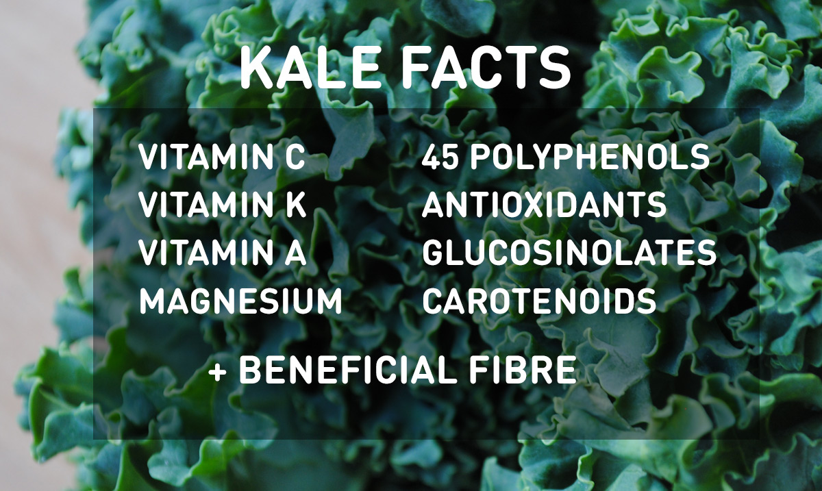 Kale: nutrition facts and health benefits, different types of kale, and how to use it.