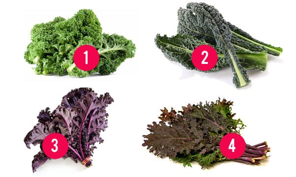 types-of-kale