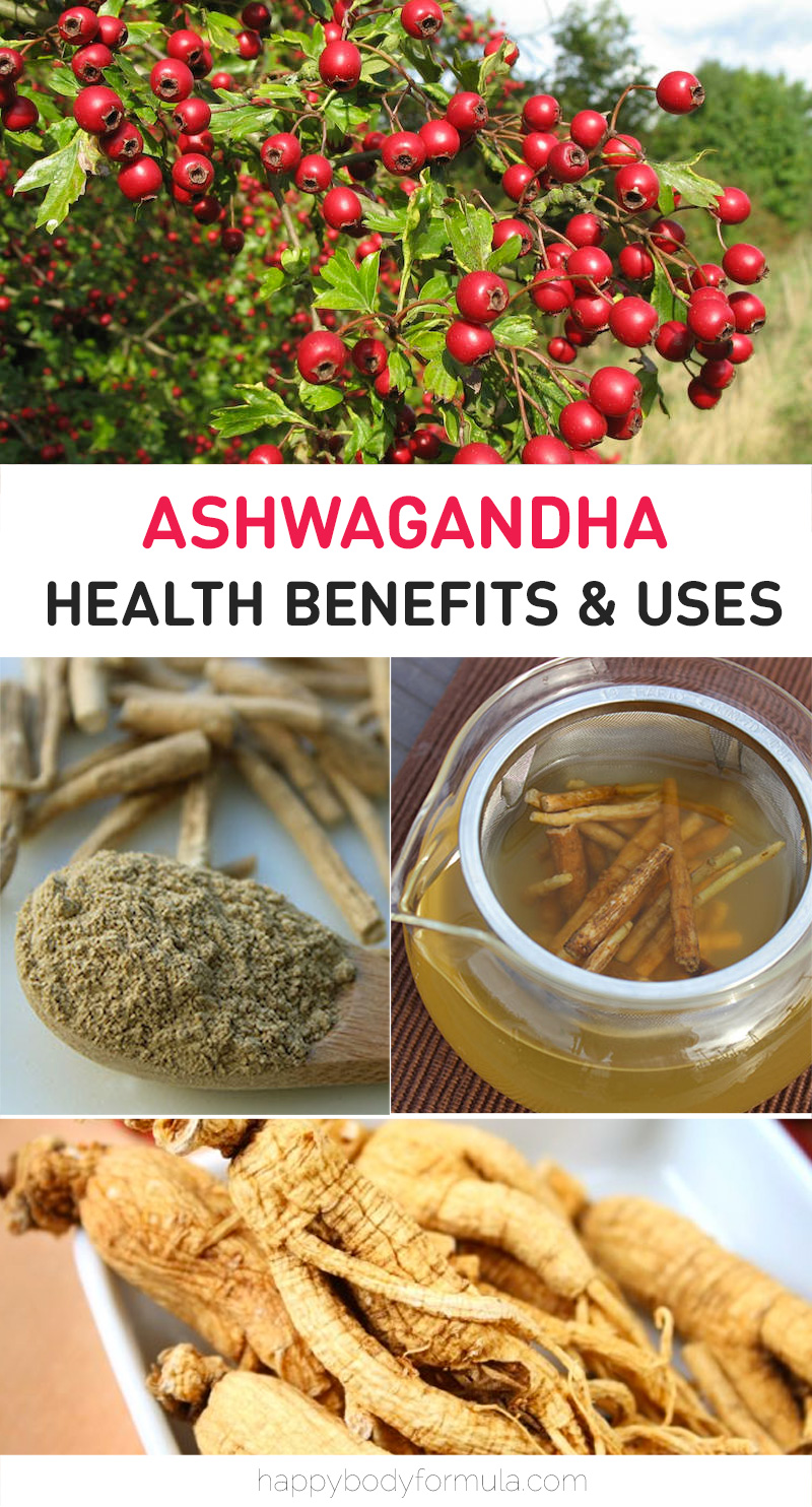 Learn more about the powerful, natural adaptogenic supplement known as Ashwagandha powder, how to use it, and its amazing benefits. | HappyBodyFormula.com
