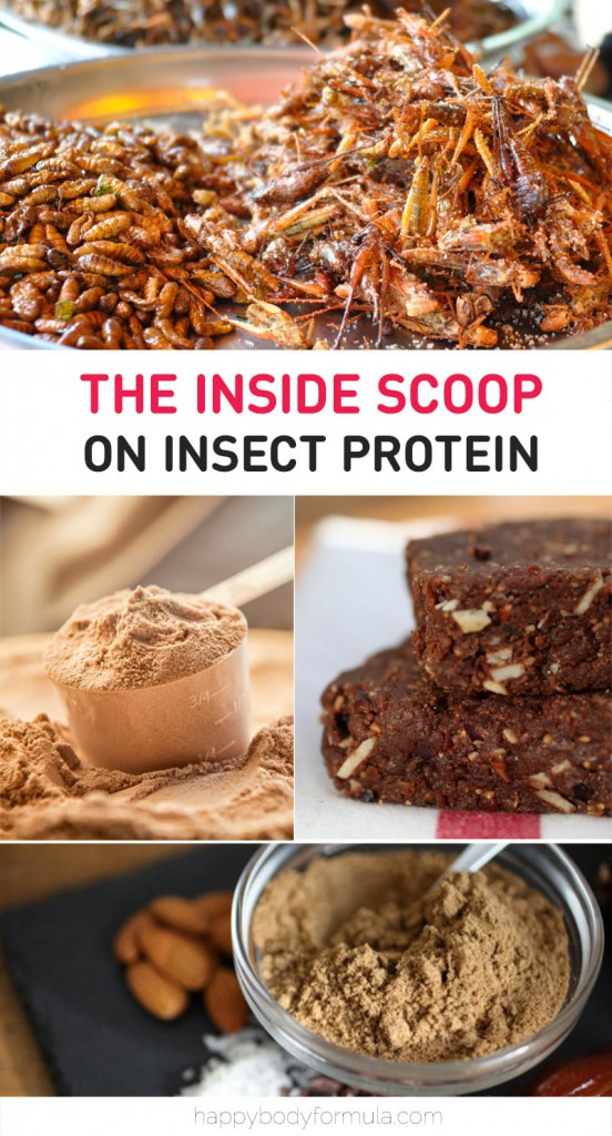 The Inside Scoop On Insect Protein - Benefits, Types and How To Use It