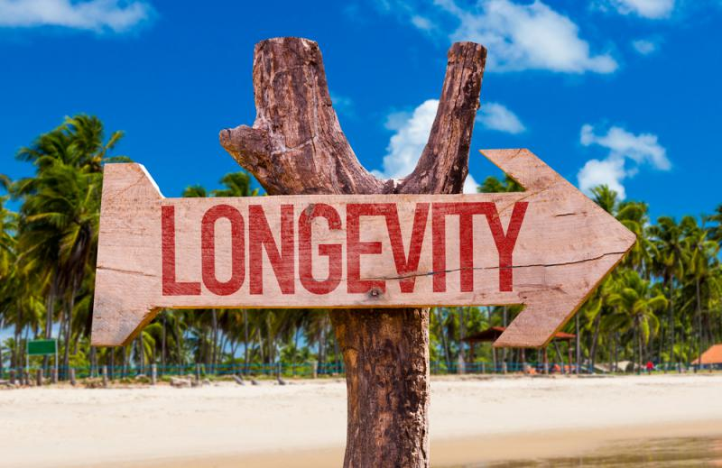 The Ultimate Guide To Longevity - Part 2