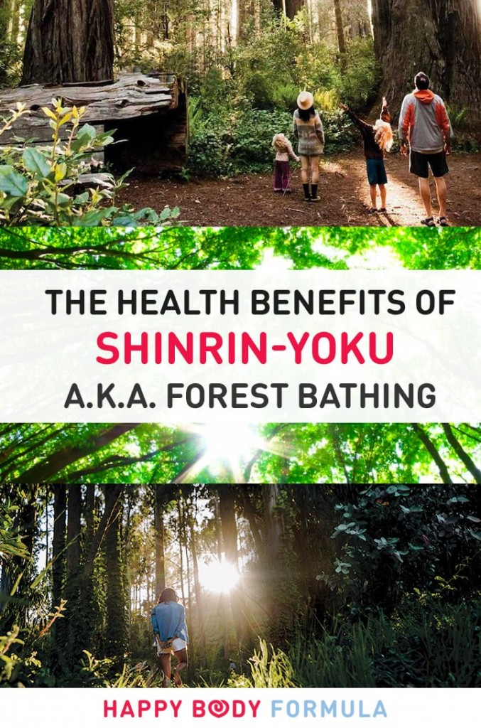 The Benefits Of Shinrin-Yoku (a.k.a. Forest Bathing)
