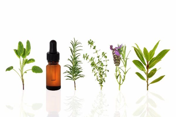 Best Essential Oils For A Starter Kit