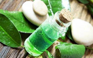 tea-tree-oil-benefits-3 (1)