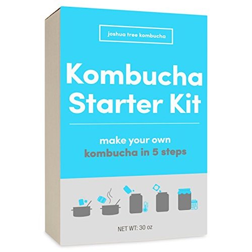 Joshua Tree Kombucha Starter Kit