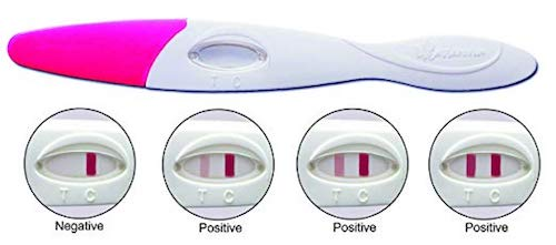 Cassanovum Early Detection Pregnancy Tests