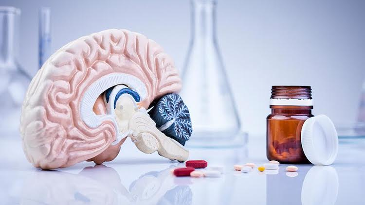 Top 10 Best Brain Supplements (Nootropics) Reviewed in 2019