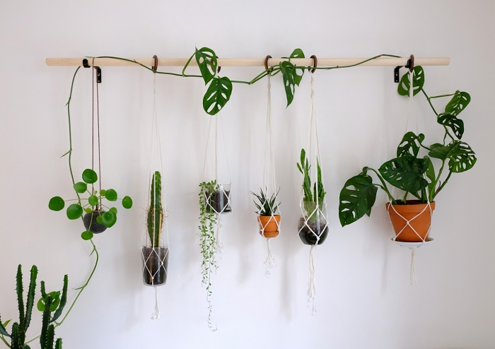 PLANT WALL MADE