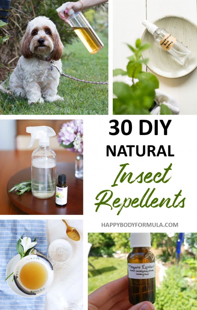 30 DIY Natural Insect Repellents | Happybodyformula.com